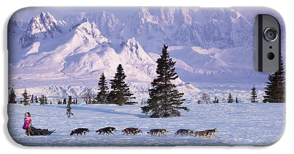 Dog In Landscape iPhone Cases - Deedee Jonrowe Mushes Her Dog Team iPhone Case by Jeff Schultz