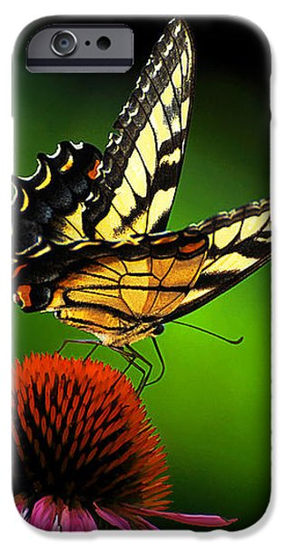 Dining Alone iPhone Case by Lois Bryan