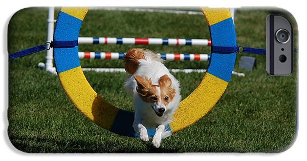 Puppies iPhone Cases - Dog Agility Course iPhone Case by Paul O