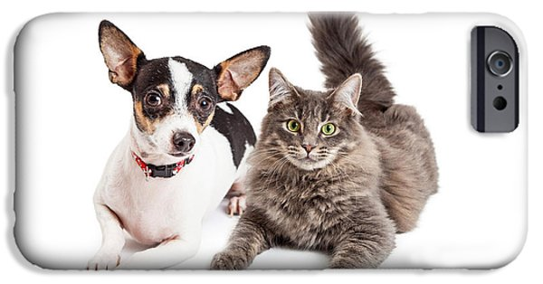 Little iPhone Cases - Dog and Cat Laying Together Looking Forward iPhone Case by Susan  Schmitz