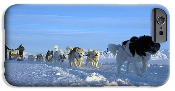 Arctic Dog iPhone Cases - Dogsledge, Northern Greenland iPhone Case by Louise Murray