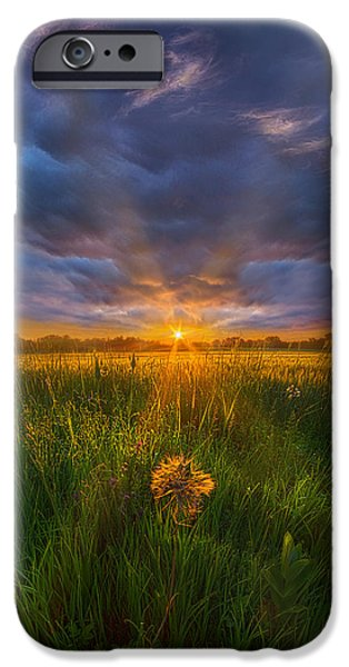 Floral Photographs iPhone Cases - Dont Stop Believin iPhone Case by Phil Koch