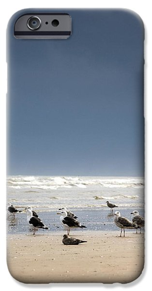 Colour Image iPhone Cases - East Riding, Yorkshire, England Rusty iPhone Case by John Short