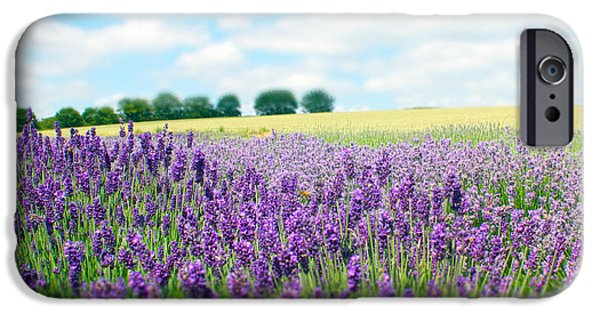 Crops iPhone Cases - English Lavender Fields iPhone Case by Toula Mavridou-Messer