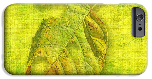 Abstract Digital iPhone Cases - Fall Remnants iPhone Case by Larry Bishop