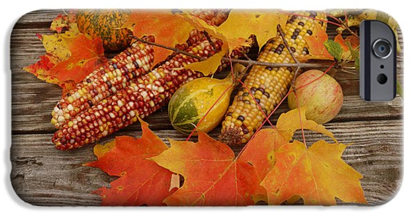 Cabin Window iPhone Cases - Fall still life iPhone Case by Tony Craddock