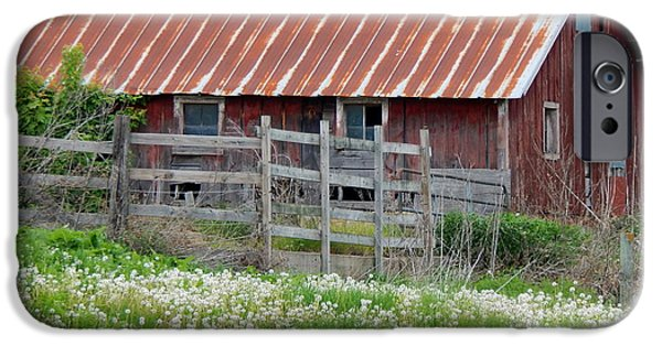 Old Barns iPhone Cases - Field of Fluff iPhone Case by Wild Thing