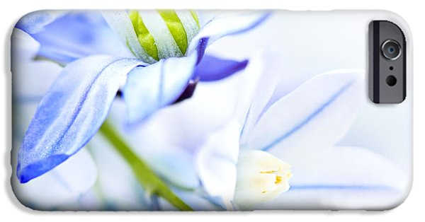 Flower Bouquet iPhone Cases - First spring flowers iPhone Case by Elena Elisseeva
