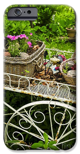 Basket iPhone Cases - Flower cart in garden iPhone Case by Elena Elisseeva
