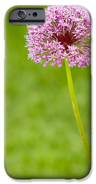 Best Sellers -  - Fauna iPhone Cases - Flower iPhone Case by Sebastian Musial