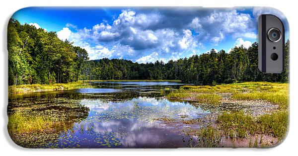 Pines iPhone Cases - Fly Pond in the Adirondack Mountains iPhone Case by David Patterson