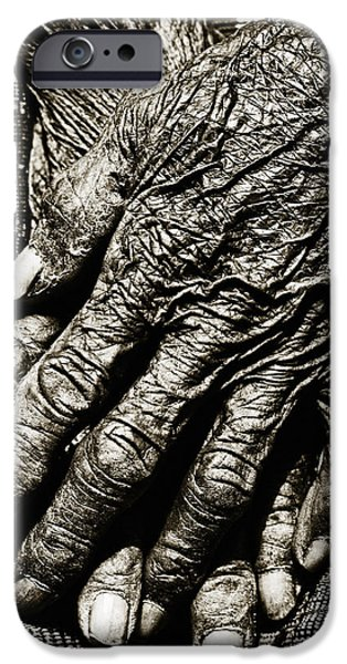 Folded Hands iPhone Case by Skip Nall