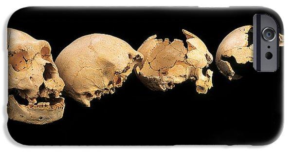 Evolution Of Humanity iPhone Cases - Fossilised Skulls, Sima De Los Huesos iPhone Case by Javier Truebamsf