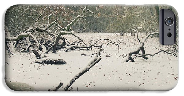 Swindon iPhone Cases - Frozen Fallen iPhone Case by Andy Smy