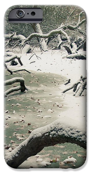 Frozen Fallen Sq iPhone Case by Andy Smy
