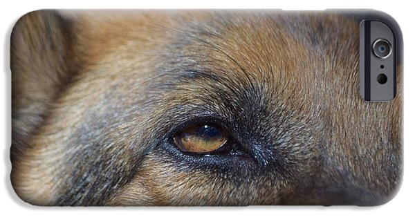 Dog Close-up iPhone Cases - German Shepherd iPhone Case by Maria Jansson