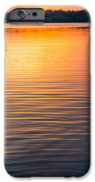 Drama iPhone Cases - Golden Waters iPhone Case by Shelby  Young