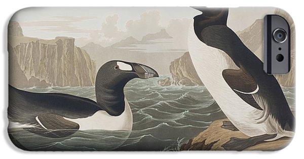 Extinct iPhone Cases - Great Auk iPhone Case by John James Audubon