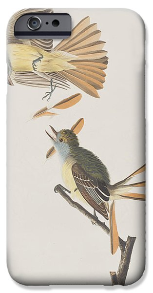 Flycatcher iPhone Cases - Great Crested Flycatcher iPhone Case by John James Audubon