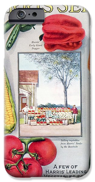 Farmstand iPhone Cases - Historic Harris Seeds Catalog iPhone Case by Remsberg Inc
