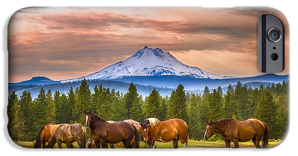 Agricultural iPhone Cases - Horses grazing at Mt Jefferson iPhone Case by John Trax