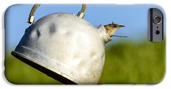 Abandonment iPhone Cases - House wren in Tea Kettle Home iPhone Case by Thomas R Fletcher