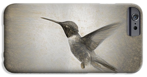 Figure iPhone Cases - Hummingbird in Charcoal iPhone Case by Janice Rae Pariza