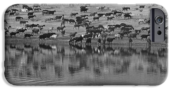 Meadow Photographs iPhone Cases - Iranian Shepherd With His Flock iPhone Case by Mojtabaa Vahdati