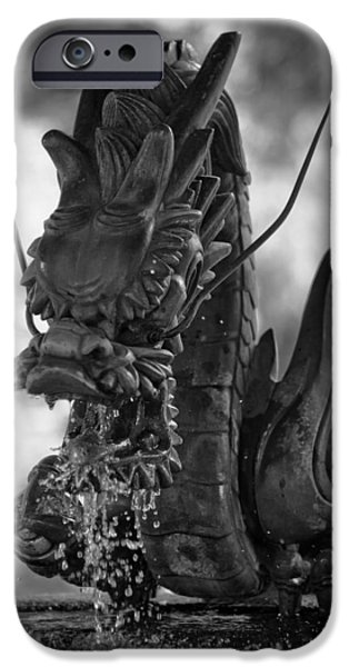Fountain iPhone Cases - Japanese Water Dragon iPhone Case by Sebastian Musial