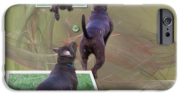 Chocolate Lab iPhone Cases - Keep Your Eye On The Ball iPhone Case by Roger Wedegis