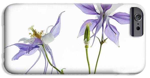 Botanical iPhone Cases - Lilac Aquilegia iPhone Case by Ann Garrett