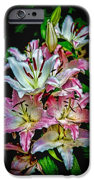 Flower Of Life iPhone Cases - Lilies of the Falls iPhone Case by John Haldane