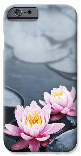 Waterlily iPhone Cases - Lotus blossoms iPhone Case by Elena Elisseeva