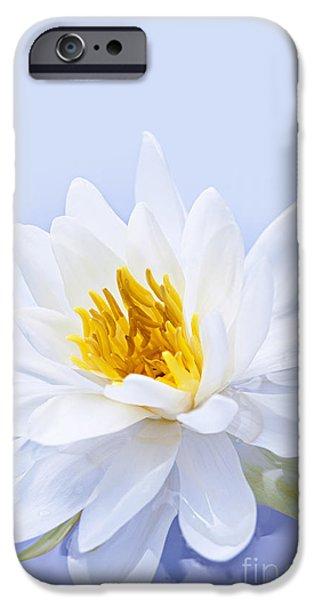 Flora Photographs iPhone Cases - Lotus flower iPhone Case by Elena Elisseeva