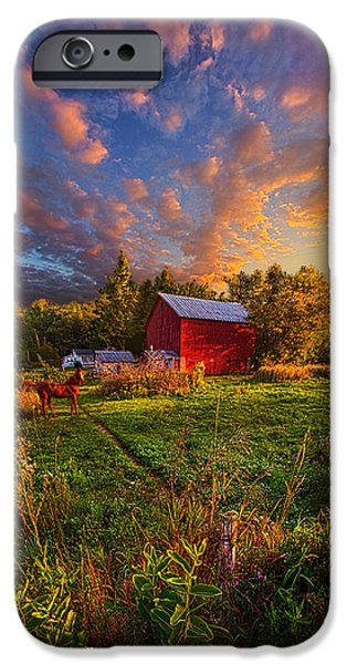 Meadow iPhone Cases - Loves Pure Light iPhone Case by Phil Koch