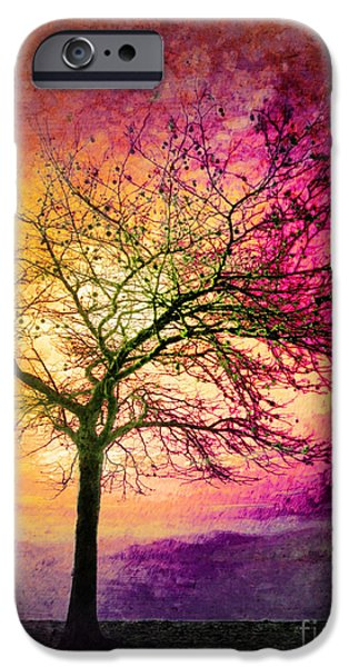 Tara Turner iPhone Cases - Morning Fire iPhone Case by Tara Turner
