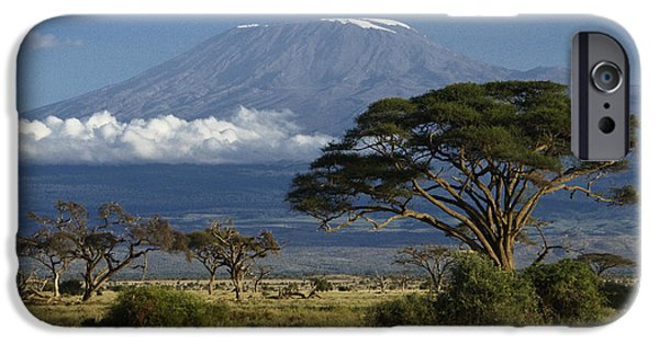 Safari iPhone Cases - Mount Kilimanjaro iPhone Case by Michele Burgess
