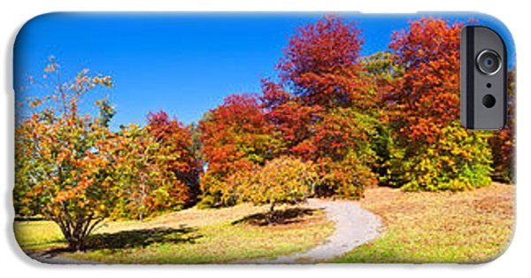 Botanical iPhone Cases - Mt Lofty Botanical Gardens iPhone Case by Bill  Robinson