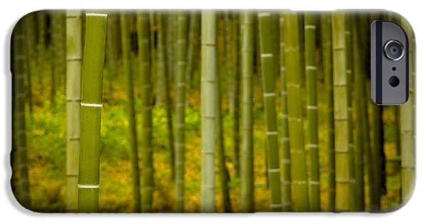 Hot iPhone Cases - Mystical Bamboo iPhone Case by Sebastian Musial