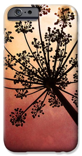 Fireworks Photographs iPhone Cases - Natures Fireworks iPhone Case by Amy Tyler