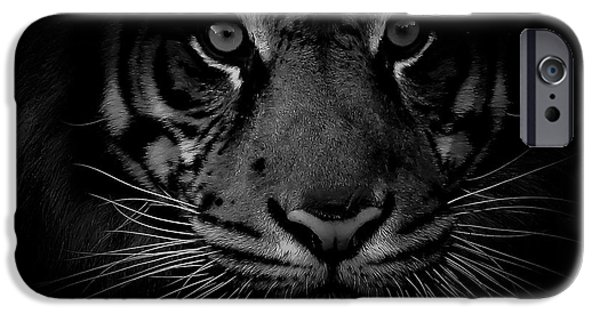 The Tiger iPhone Cases - Out Of Darkness iPhone Case by Athena Mckinzie