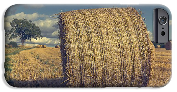 Crops iPhone Cases - Outstanding in its field iPhone Case by Chris Fletcher