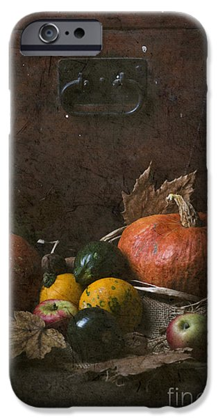 Farm Pyrography iPhone Cases - Pumpkins iPhone Case by Jelena Jovanovic