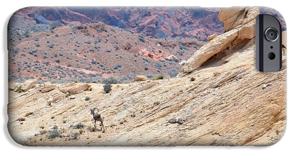 Red Rock Tapestries - Textiles iPhone Cases - Ram iPhone Case by Edna Weber