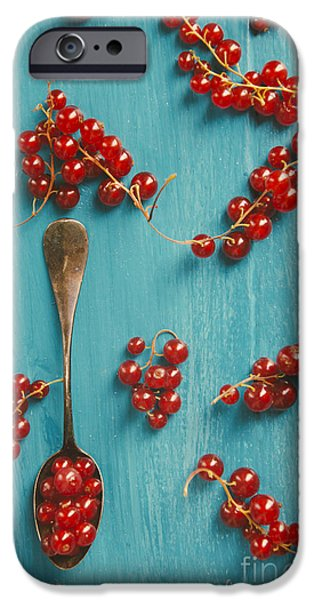 Fresh Pyrography iPhone Cases - Red Currant iPhone Case by Jelena Jovanovic