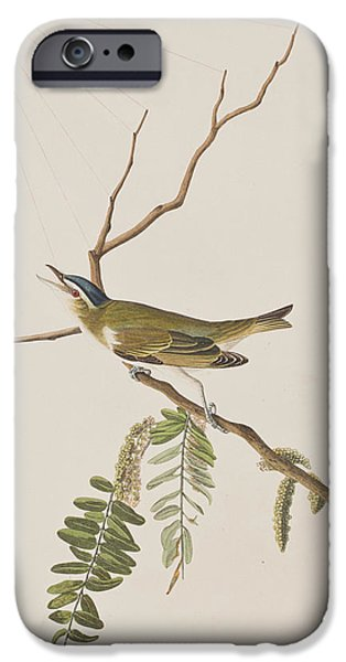 Insects Drawings iPhone Cases - Red Eyed Vireo iPhone Case by John James Audubon