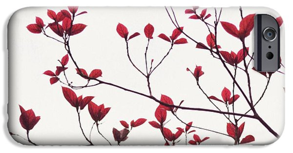 Forest iPhone Cases - Red Leaves iPhone Case by Mingtaphotography