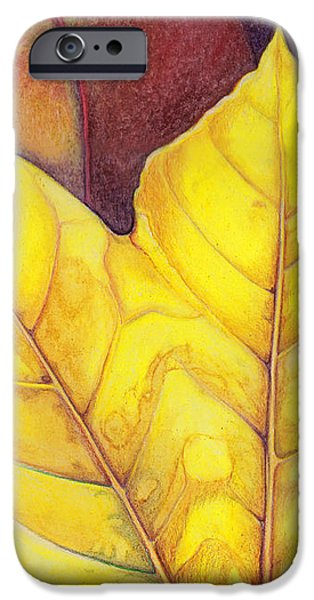 Releaf iPhone Case by Amy Tyler