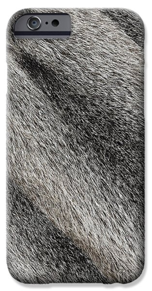 Sheets iPhone Cases - River coypu nutria fur texture iPhone Case by Artur Mroszczyk