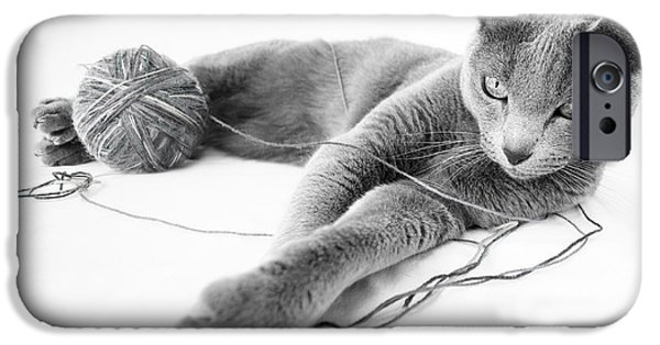 Gray Hair iPhone Cases - Russian Blue iPhone Case by Nailia Schwarz